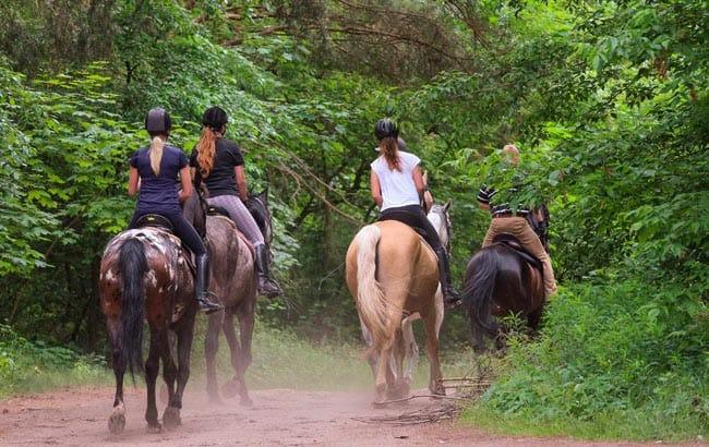 Paseo a caballo en málaga